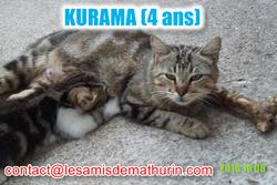 KURUMA modif 2