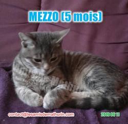 MEZZO modif 03