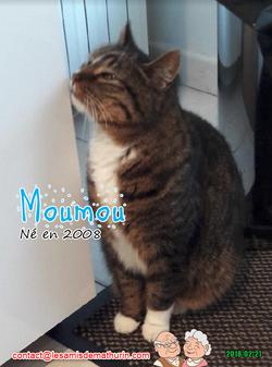 MOUMOU 03