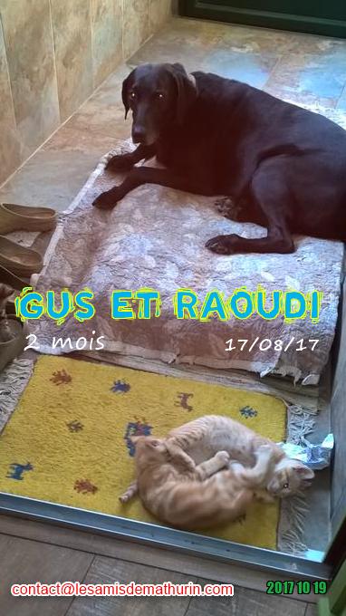 GUS et RAOUDI 02