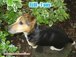 ELOI 07