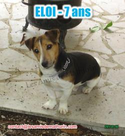 ELOI 06