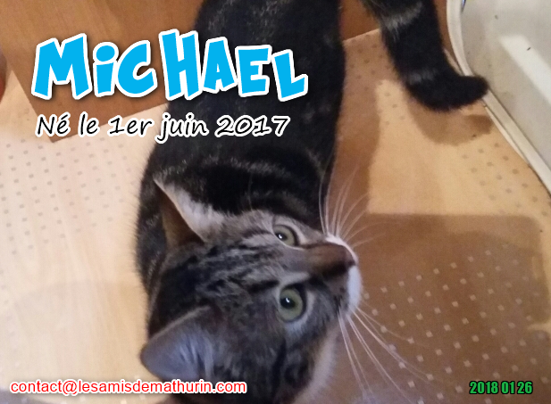 MICHAEL 02