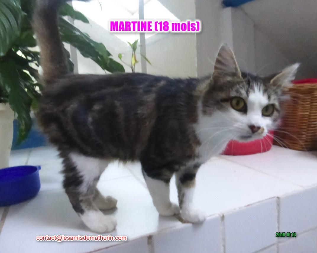 Martine modif 5