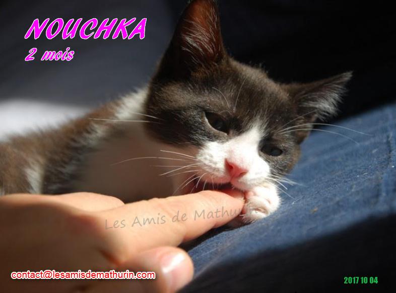 NOUCHKA 07