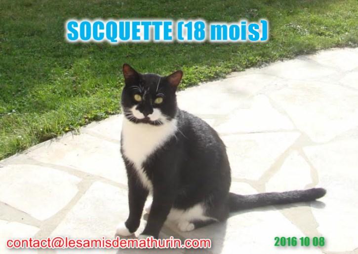Socquette Modif1