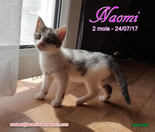 NAOMI 04