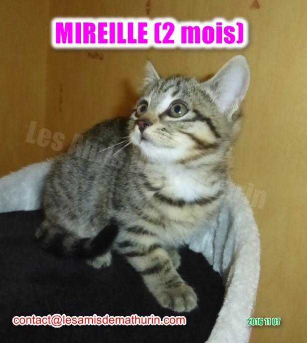 MIREILLE modif 02