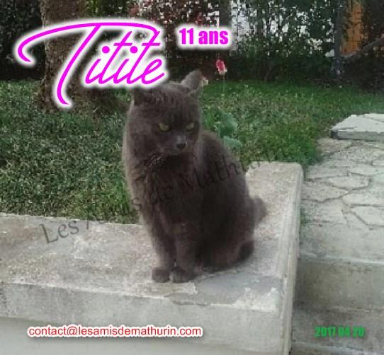 TITITE 01