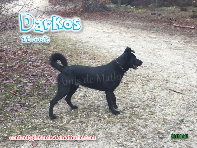 Darkos 01