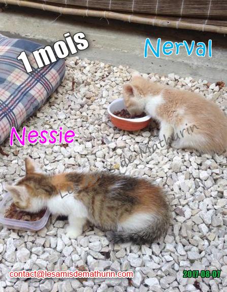 Nessie et Nerval 03