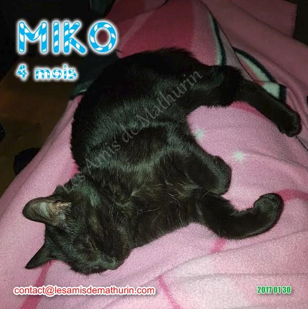 MIKO 01