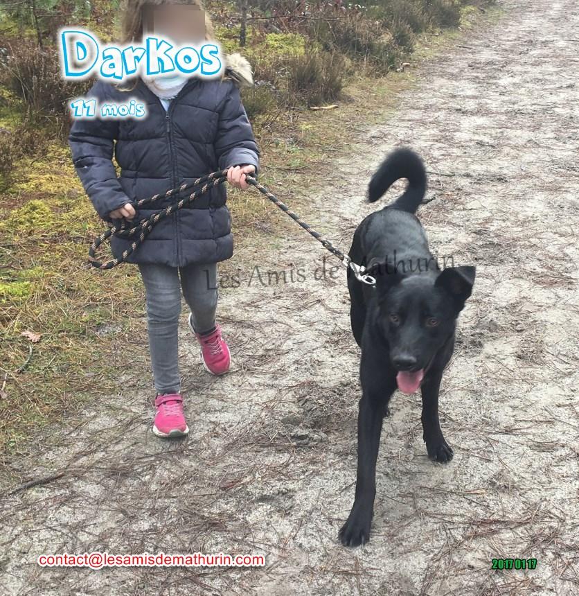 Darkos 05