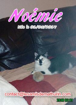 NOEMIE 03