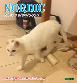 NORDIC 05