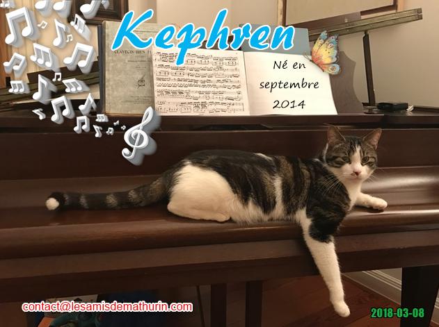 KEPHREN 03