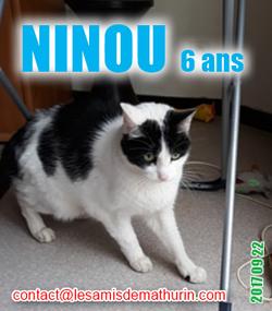 NINOU 03