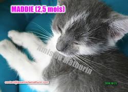 Maddie 2