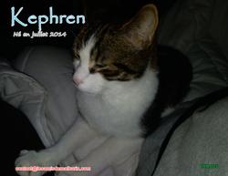 Kephren 11
