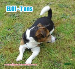ELOI 03