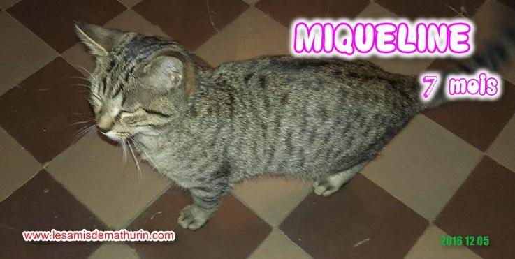 MIQUELINE modif 03