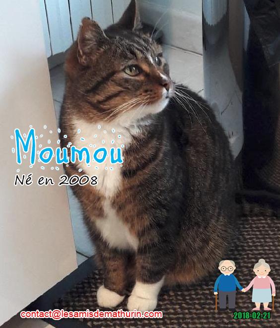 MOUMOU 02