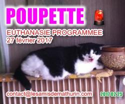 POUPETTE 02