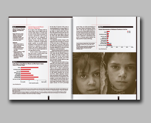 Gender Equality & the MDGs booklet