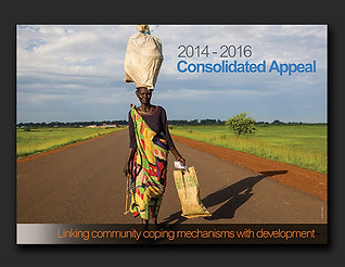 OCHA Consolidated Appeal social media posters