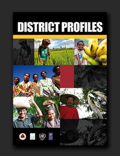 Timor-Leste District Profiles publication