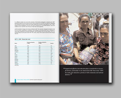 UNDP Gender Assessment report