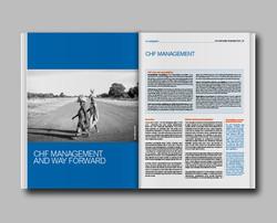OCHA CHF annual report 2013
