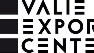 LOGO Valie Export Center