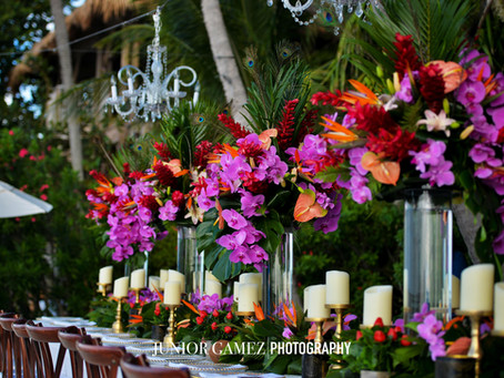 Tropical Wedding at Little Palm Island