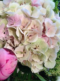 florist,oakwood florist ltd, florist in oakwood , southgate florist