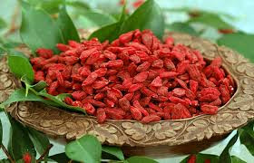 Conheça os benefícios do Goji berry!