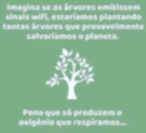 silvoterapia wi fi.jpg