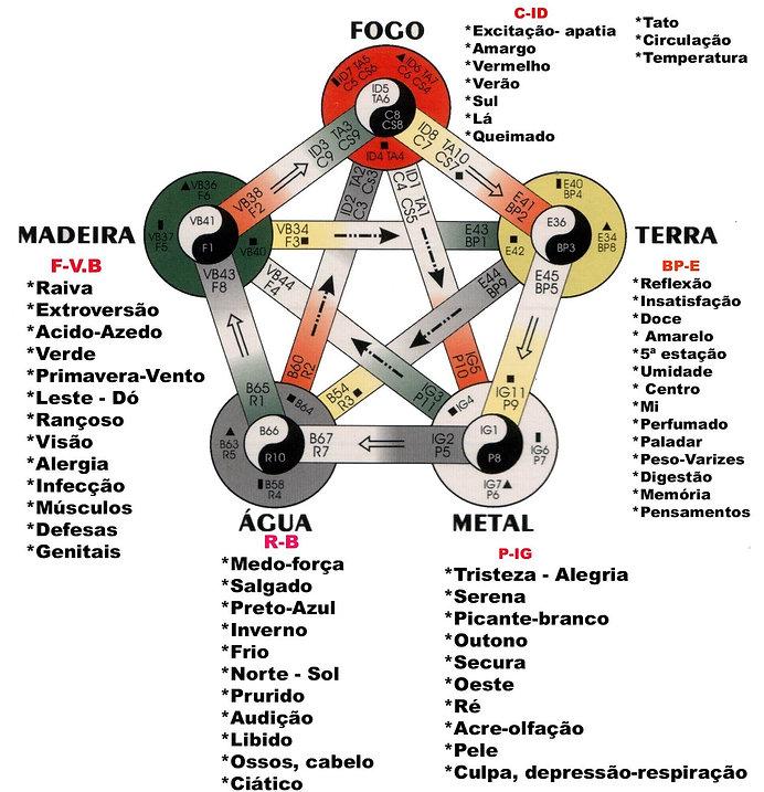 5 elementos.jpg