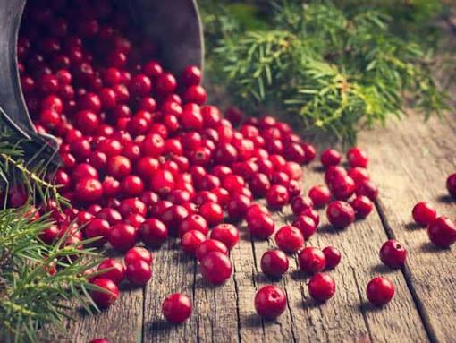 Cranberries! Poder Antioxidante!