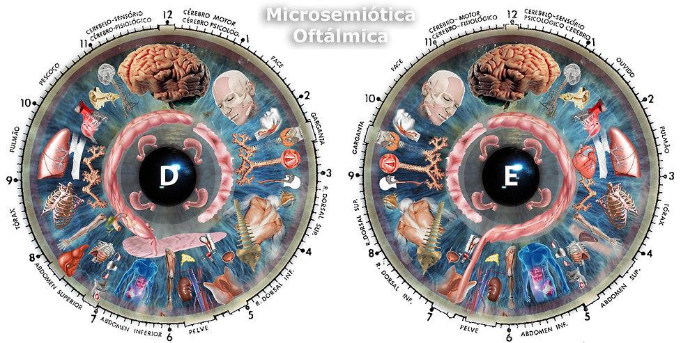 mapa olhos iridologia.jpg