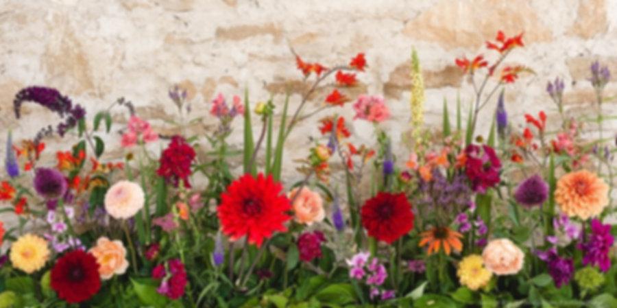 Flores de Bach.jpg