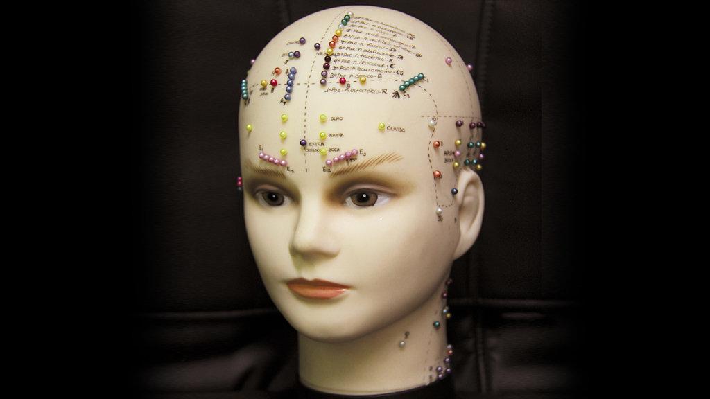 Craniopuntura Yamamoto.jpg