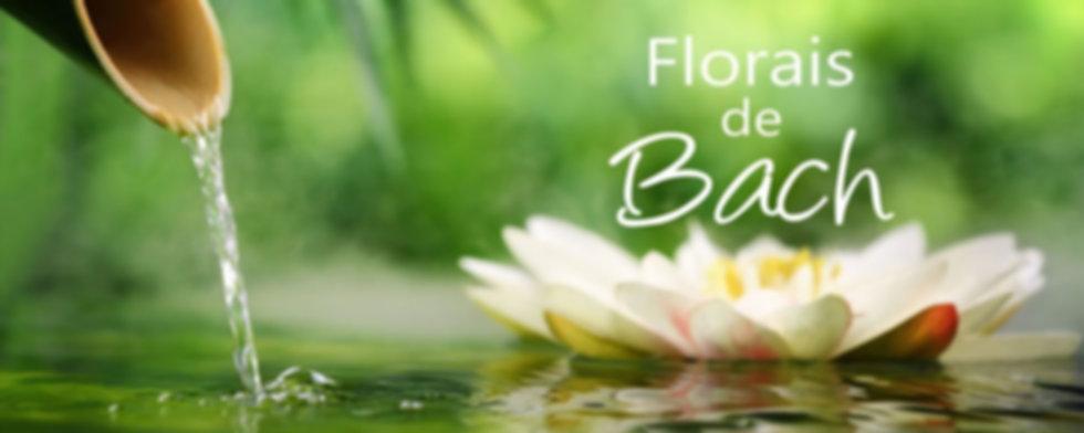frascos florais de Bach.jpg