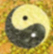 14421t.jpg