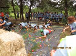 Campamento 2015