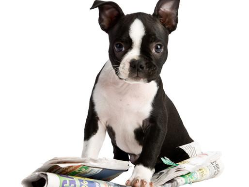 Mindfulness: Newspapers and Yoga Mats