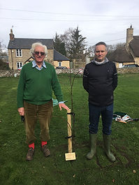 Cllr. Stowell and Cllr. Jones planting a lime tree to mark the centenary of World War One