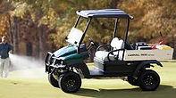 Carryall golf cart.jpg