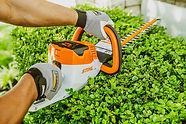 Stihl Hedge trimmer 2.jpg