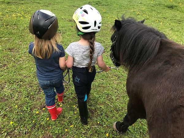 Kind_Ponys_aufderWiese.JPG